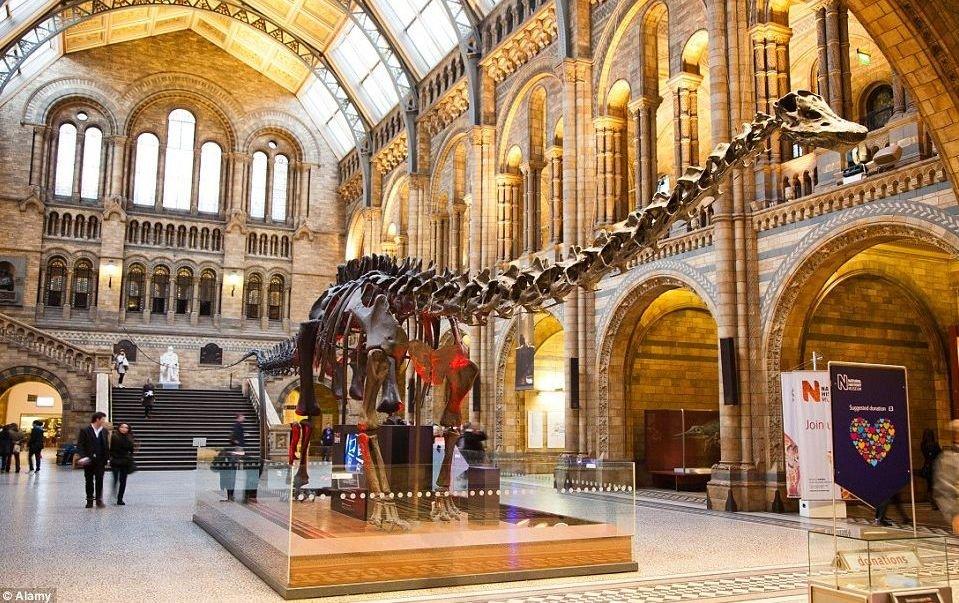 Natural Museum